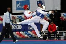 European Senior Taekwondo Championship